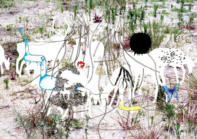 つながりの庭,60×86cm,Lambda Print,2006