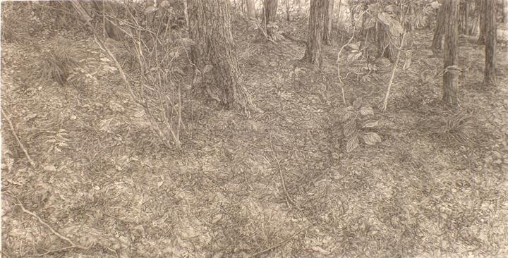 2013「日々なる土地」紙、木炭 101×186.5cm