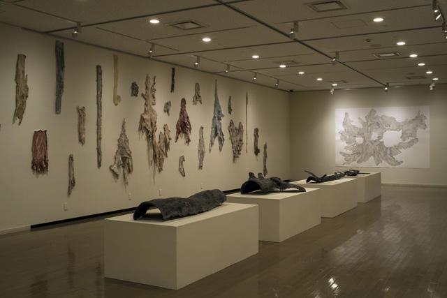 現代美術レジデンスプログラム 皮膚感覚(美濃加茂市民ミュージアム)