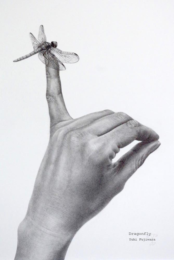 「蜻蛉 Dragonfly」h33.3 w24.5   2013年作 鉛筆画